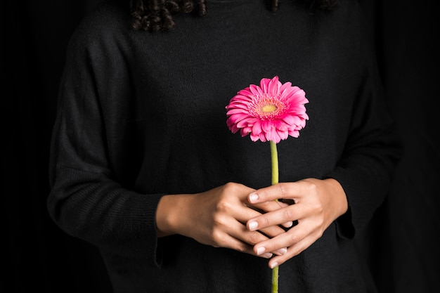 Woman holding gerbera flower in hands