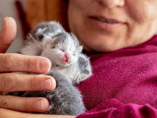 彼女の腕の中で小さな新生子猫を保持している女性
