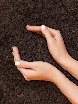 Woman holding pile of soil above ground. agriculture, gardening or ecology concept, top view