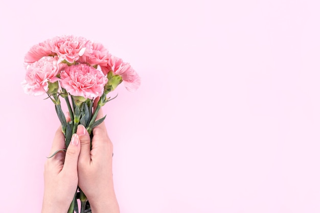 Woman holding pink carnation over pink table background