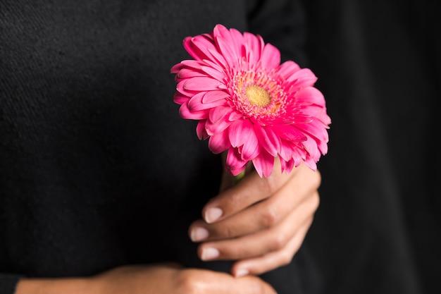 手でピンクのガーベラの花を持つ女性