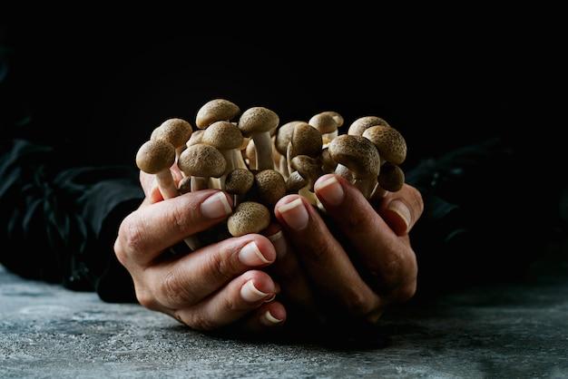 生きのこしめじを持った女性。食材。女性の手。伝統的な食材のコンセプト。