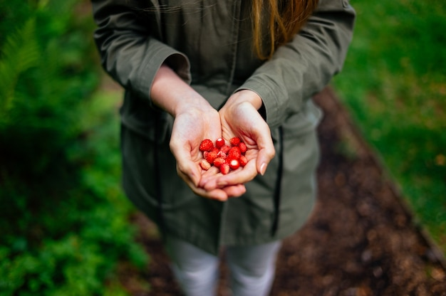 여자가 그녀의 손에 여러 작은 딸기를 들고