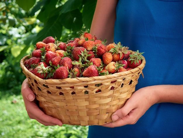 イチゴを手で保持している女性。