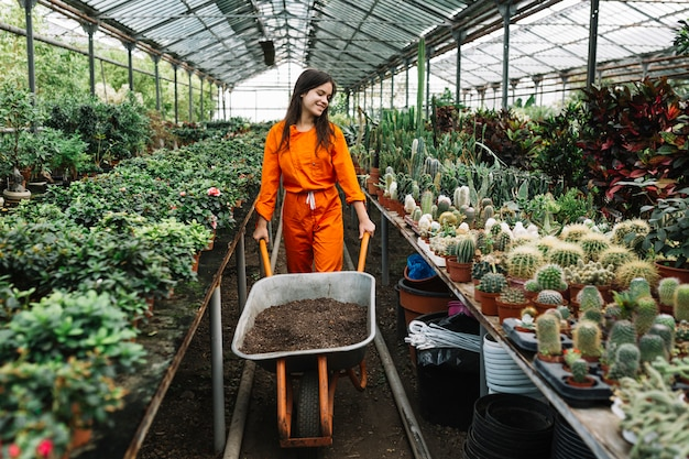 Woman holding wheelbarrow with soil in greenhouse