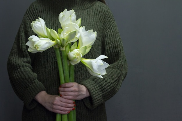 Woman holds several huge white hippeastrum in her hands