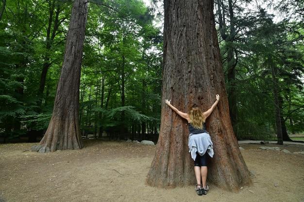 Женщина обнимает большое дерево с лицом в лесу