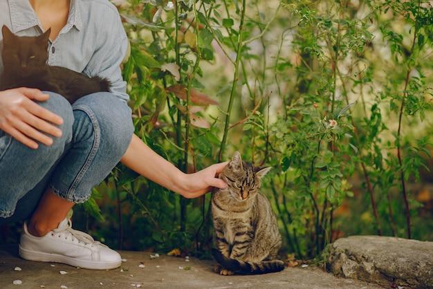 かわいい子猫と遊ぶ青いシャツを着た女性