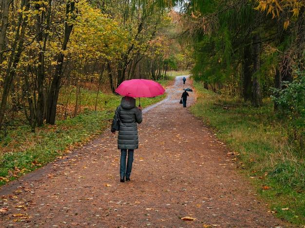 暗いコートと赤い傘をさした女性が雨の中、曲がりくねった小道を歩いています。