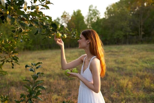 野原の女性が木の自然からリンゴを選ぶ