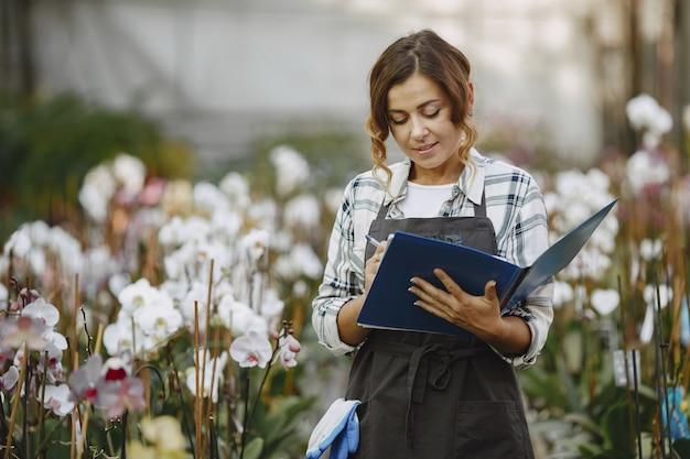 温室の女性。労働者は花をチェックします。フォルダを持つ女の子