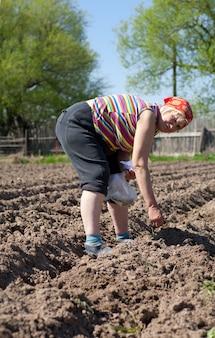 부엌 정원에서 여자