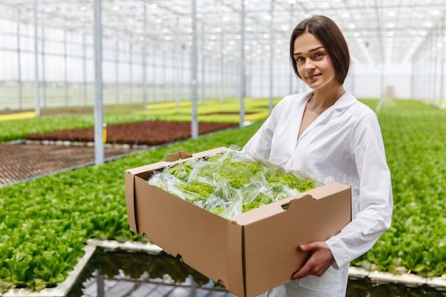 Женщина в лабораторном халате держит большую коробку с зеленым салатом, стоящим в теплице