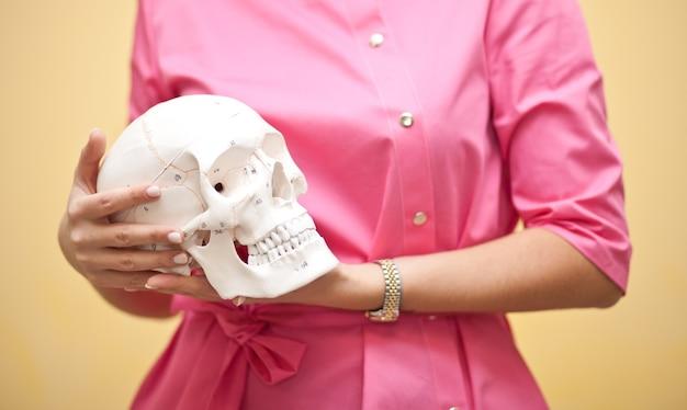 手に頭蓋骨を保持しているピンクの医療制服を着た女性。人類学、教育、科学、解剖学の概念。