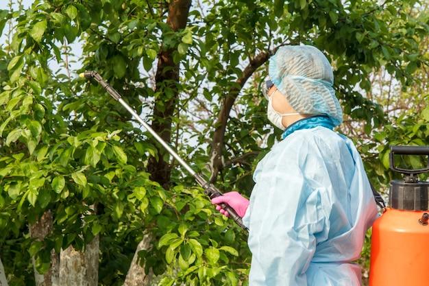 보호복을 입은 여성이 과수원에서 압력 분무기와 화학 물질로 곰팡이 질병이나 해충의 사과 나무를 뿌리고 있습니다.