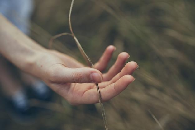 小麦の田舎のライフスタイルを持つフィールドでサンドレスの女性。