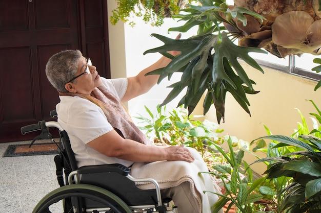 휠체어를 타고 식물을 관찰하는 여성