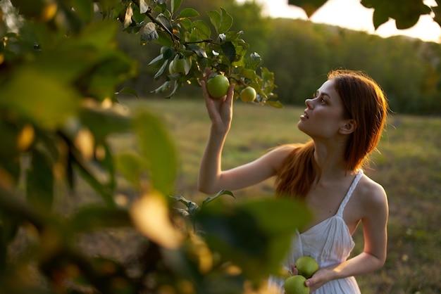 フィールド自然リンゴ果実の白いドレスを着た女性