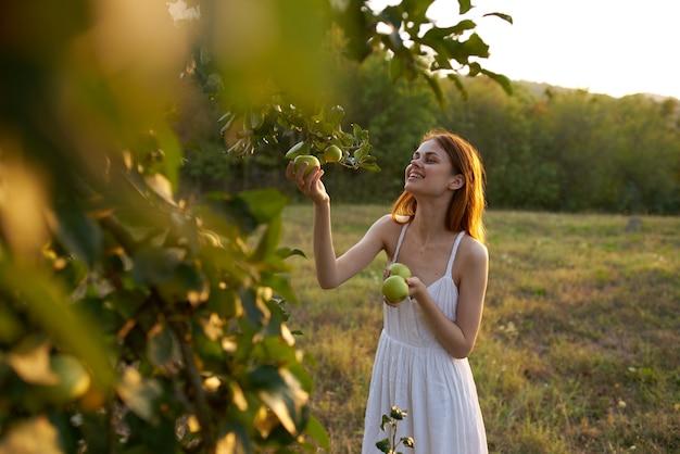自然の中で白いドレスを着た女性が果樹からリンゴを選ぶ