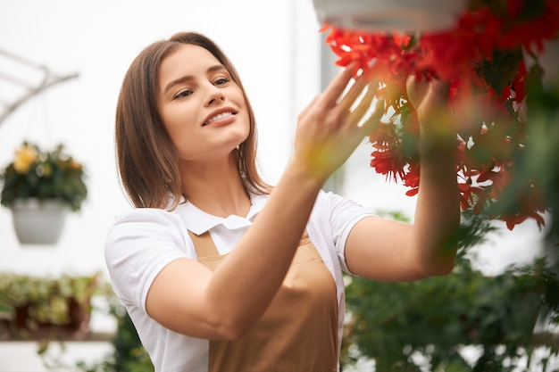 温室の鉢に花をガーデニングするエプロンの女性