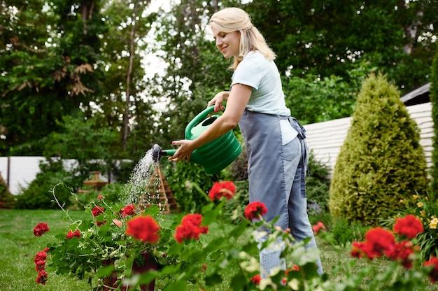 庭の花に水をまくエプロンの女性。女性の庭師は、屋外の植物、ガーデニングの趣味、花屋のライフスタイルの世話をします