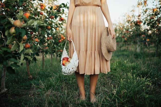 Женщина в платье, держащая белую корзину со спелыми красными органическими яблоками в саду или на ферме в осенний день.