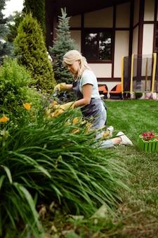 장갑에 여자는 정원에서 가지 치기로 꽃을 자른다.
