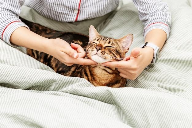 ホステスの手で彼女の最愛のベンガル猫ペットをなでるベッドの上のネグリジェの女性