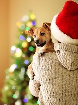 クリスマスの背景に小さな面白いかわいい犬を肩に抱えてサンタ帽子の女性