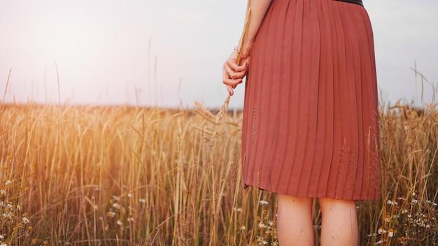 Женщина в пшеничном поле, женщина держит в руке колос пшеницы. без лица