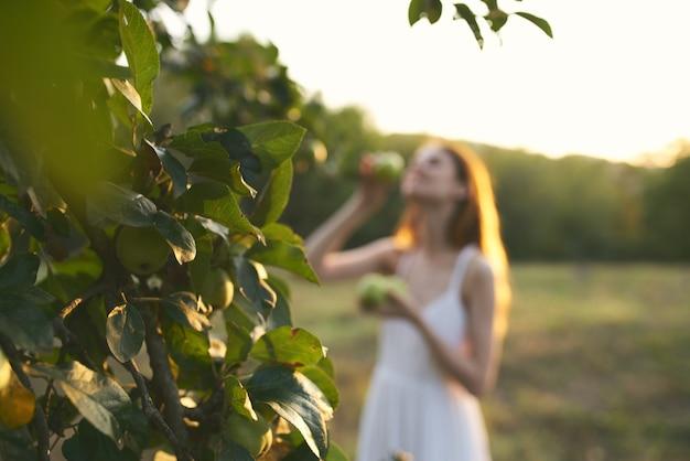 Женщина в белом платье в природе поля фрукты яблоки. фото высокого качества