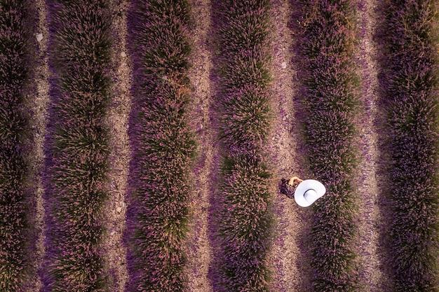 Женщина в белой шляпе в лавандовом поле летний закат пейзаж возле валенсоль