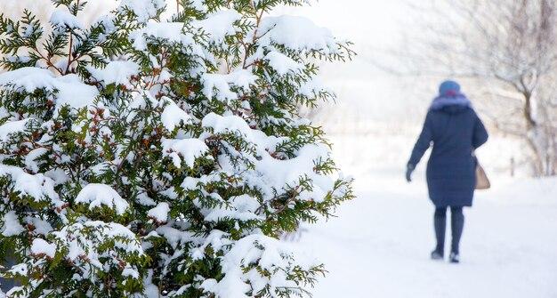 冬の女性は雪道を公園を歩く_