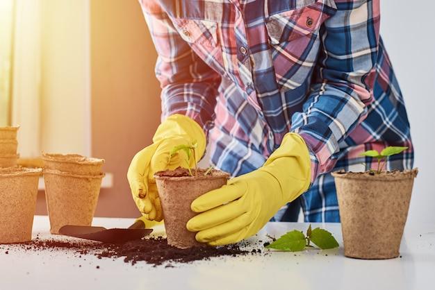 植物を移植する黄色の手袋の女性