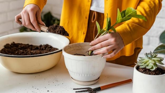 Женщина в желтой рубашке, садоводство в помещении