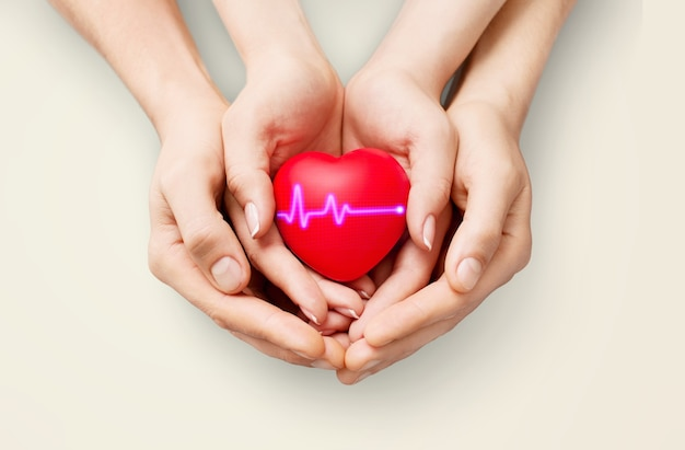 The woman is holding a red heart. concept for charity, health insurance, love,