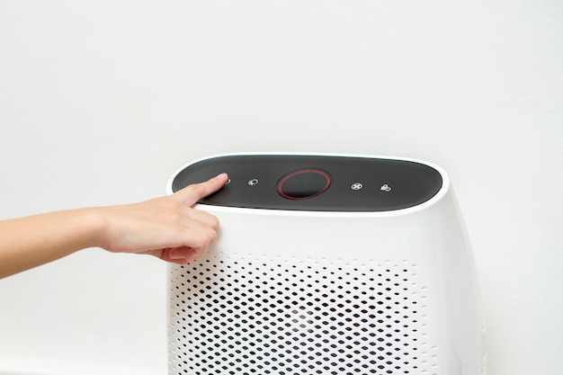 女性は家の空気清浄機をオンにしています