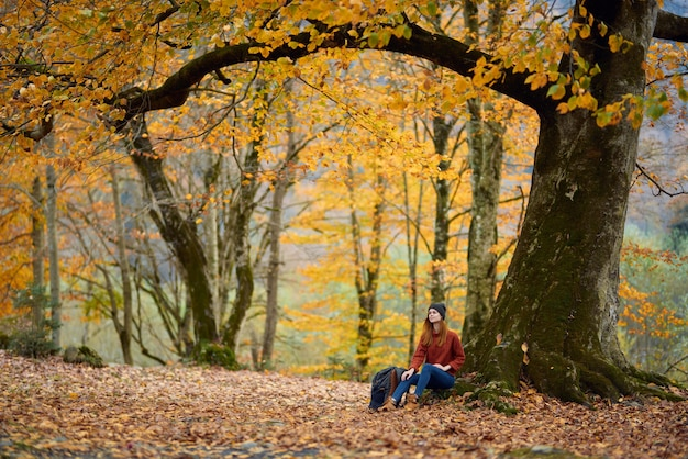Woman in jeans sweater sits under a tree in autumn forest and fallen leaves model