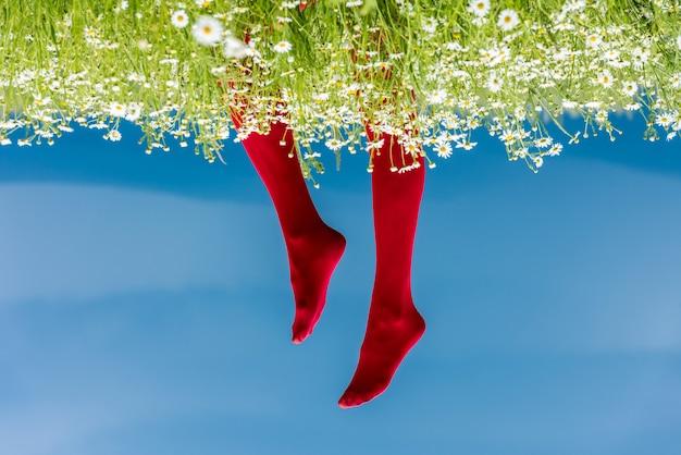 赤いストッキングの女性の足。青い空を背景に、ヒナギクの畑に赤いストッキングをはいた女性の足の概念的なイメージ。
