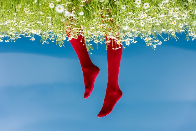 Woman legs in red stockings. conceptual image with a woman legs in red stockings on a field of daisies - against blue sky.