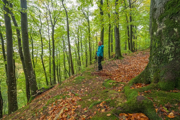 Woman looking at scenic view of fall foliage mountain landscape