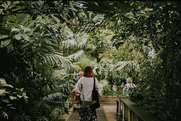 Woman, moody nature photo, aesthetic greenhouse