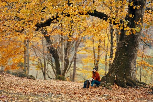 秋の落ち葉の森の木の近くの女性風景モデルのセーター