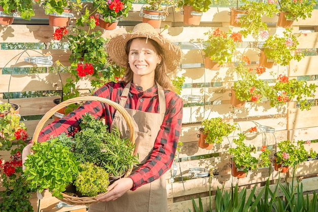 Woman nurseryman in a greenhouse smiles with a wicker basket full of aromatic plants