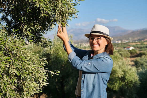 Woman in an olive grove, unripe olive crop