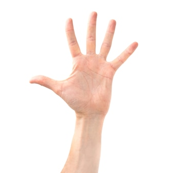女性の開いた手と白い背景で隔離の5本の指