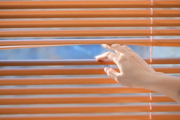 窓のブラインドを開く女性