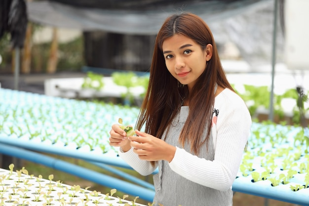 The woman owner the hydroponic vegetable farm she and organic vegetables
