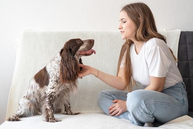 Женщина домашнее животное русский спаниель собака шоколадный мерль разные цвета глаза