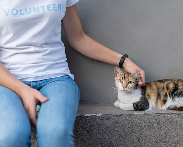 Woman petting rescue cat
